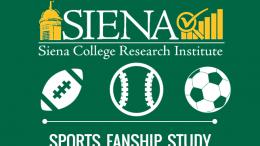 Sports fanship image